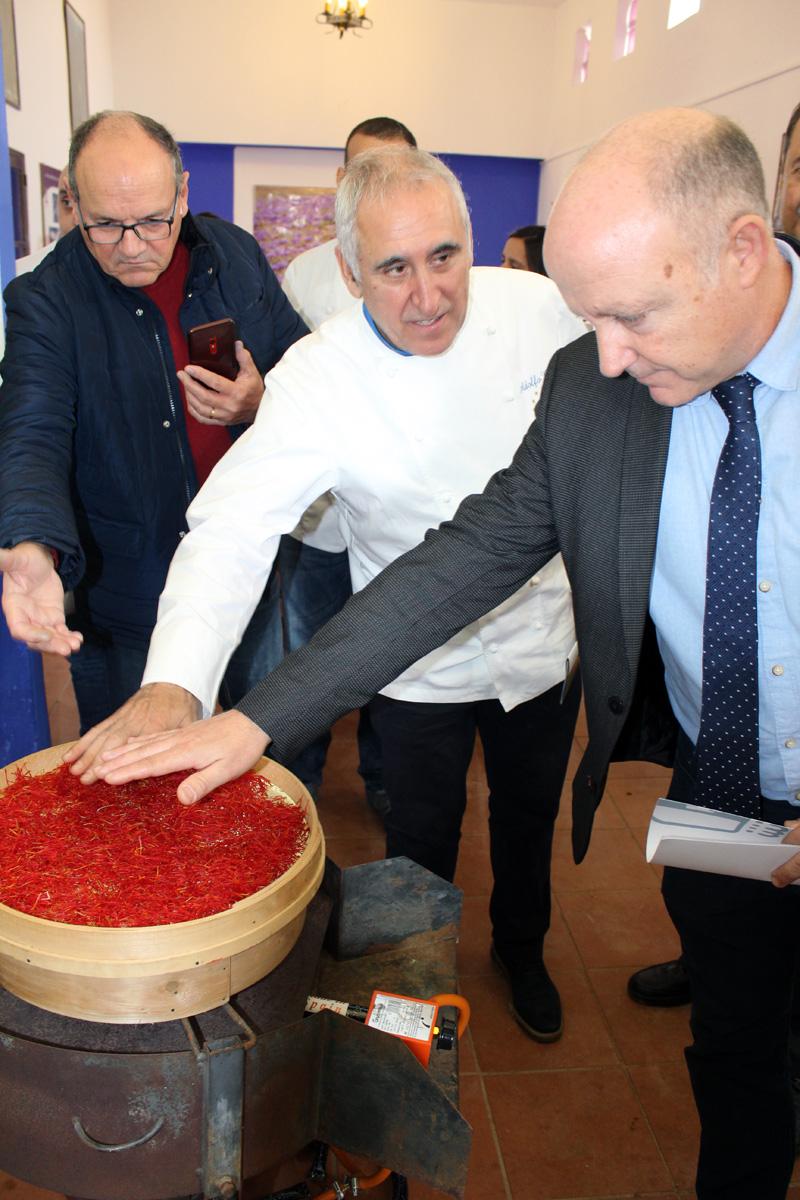 Decidido impulso de los restauradores de la región al azafrán de Villafranca